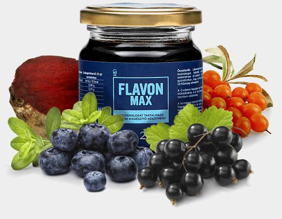 N/A FLAVON MAX (Flavonmax) 240 g